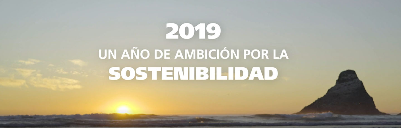 Memoria sostenibilidad 2019